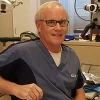 Picture of Dr. David  Stark